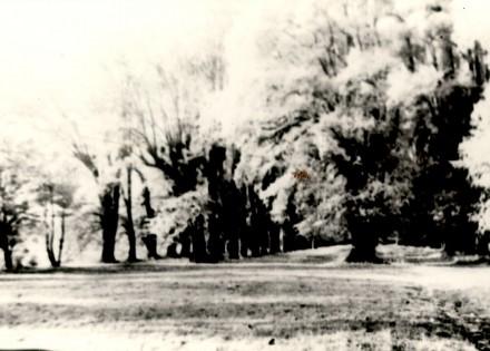 1920 Lindenallee ohne Ruine
